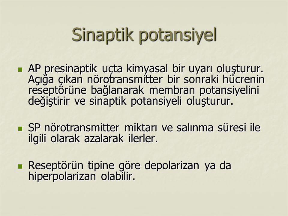 Sinaptik potansiyel