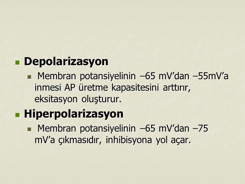 Depolarizasyon Hiperpolarizasyon