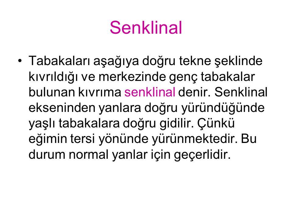 Senklinal