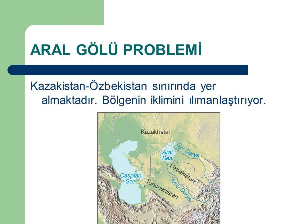 ARAL GÖLÜ PROBLEMİ Kazakistan-Özbekistan sınırında yer almaktadır.