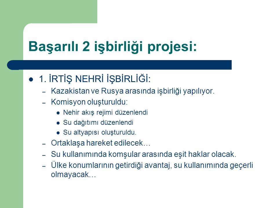 Başarılı 2 işbirliği projesi: