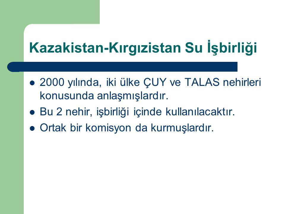 Kazakistan-Kırgızistan Su İşbirliği