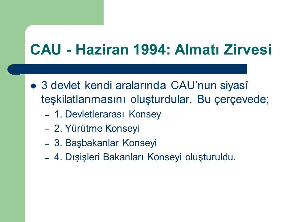 CAU - Haziran 1994: Almatı Zirvesi