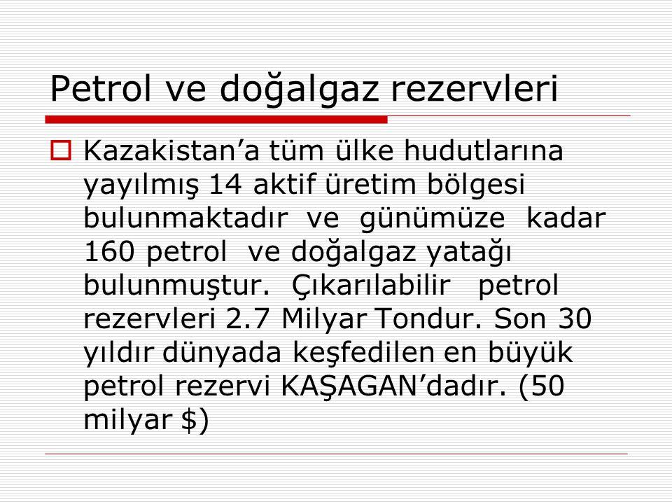 Petrol ve doğalgaz rezervleri