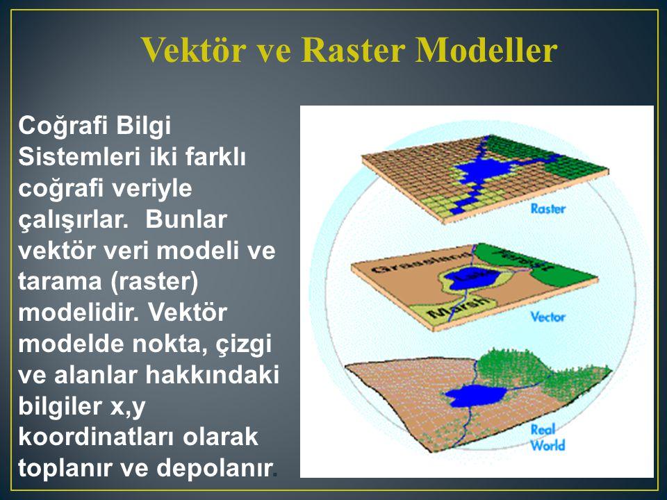Vektör ve Raster Modeller