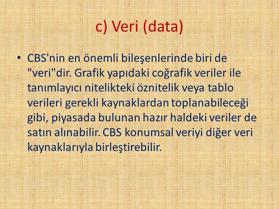 c) Veri (data)