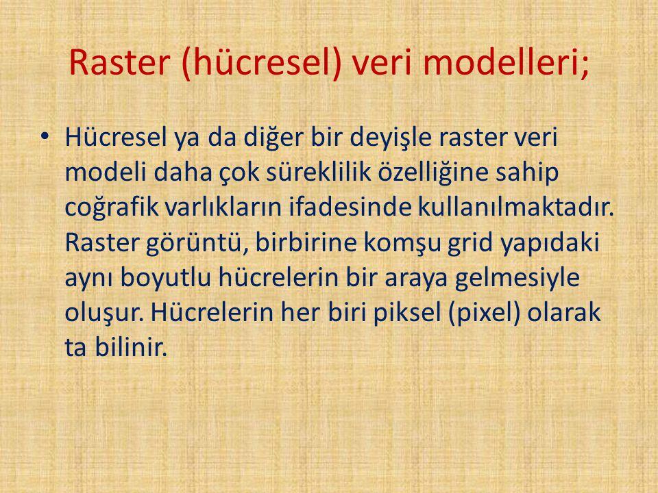 Raster (hücresel) veri modelleri;