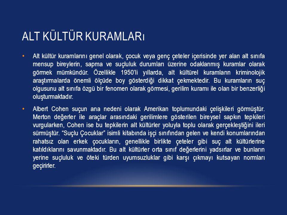 Alt Kültür Kuramları