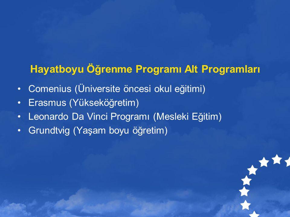 Hayatboyu Öğrenme Programı Alt Programları