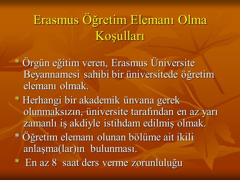 Erasmus Öğretim Elemanı Olma Koşulları