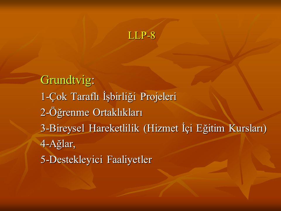 Grundtvig: LLP-8 2-Öğrenme Ortaklıkları