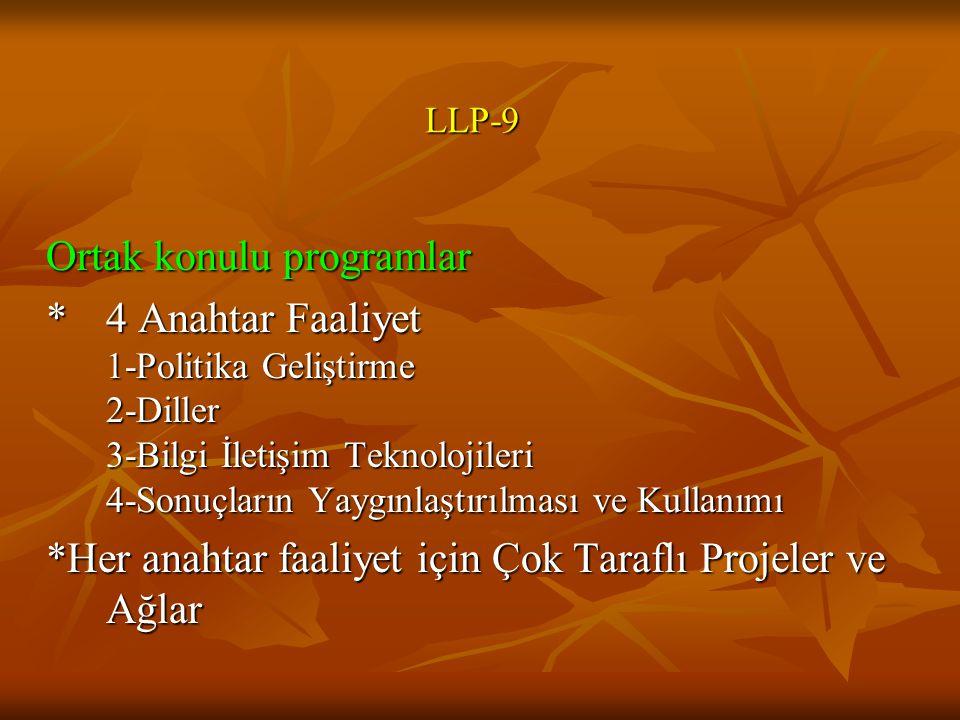 Ortak konulu programlar * 4 Anahtar Faaliyet