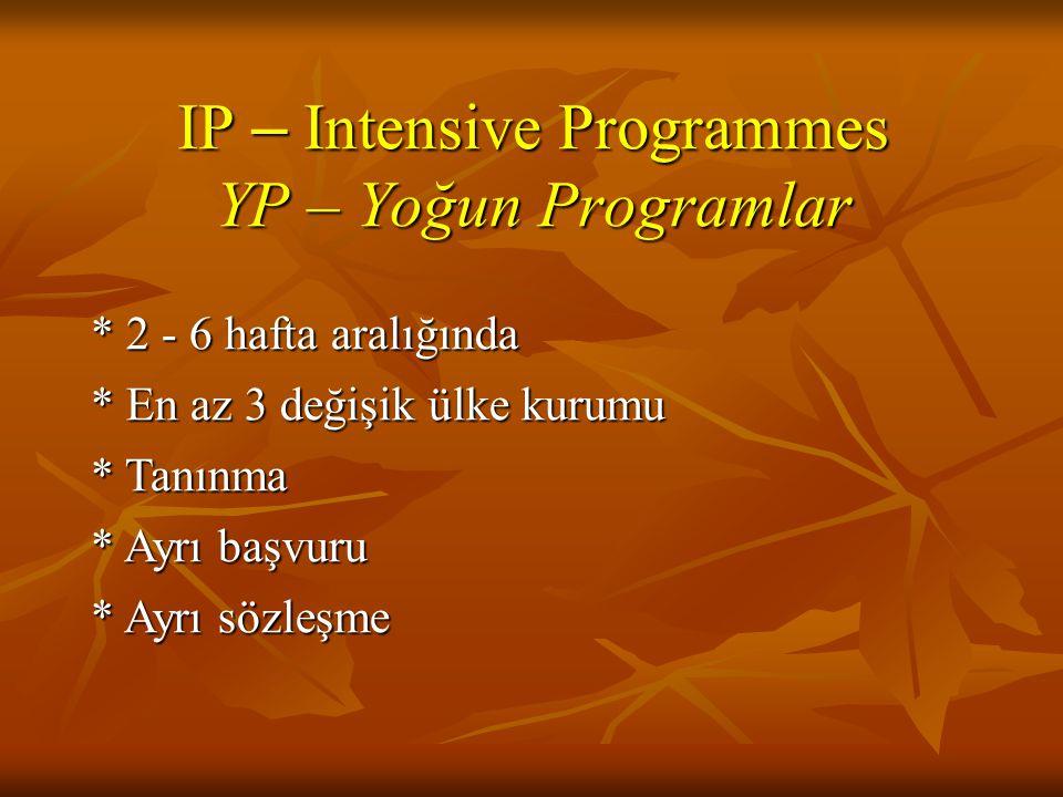 IP – Intensive Programmes YP – Yoğun Programlar