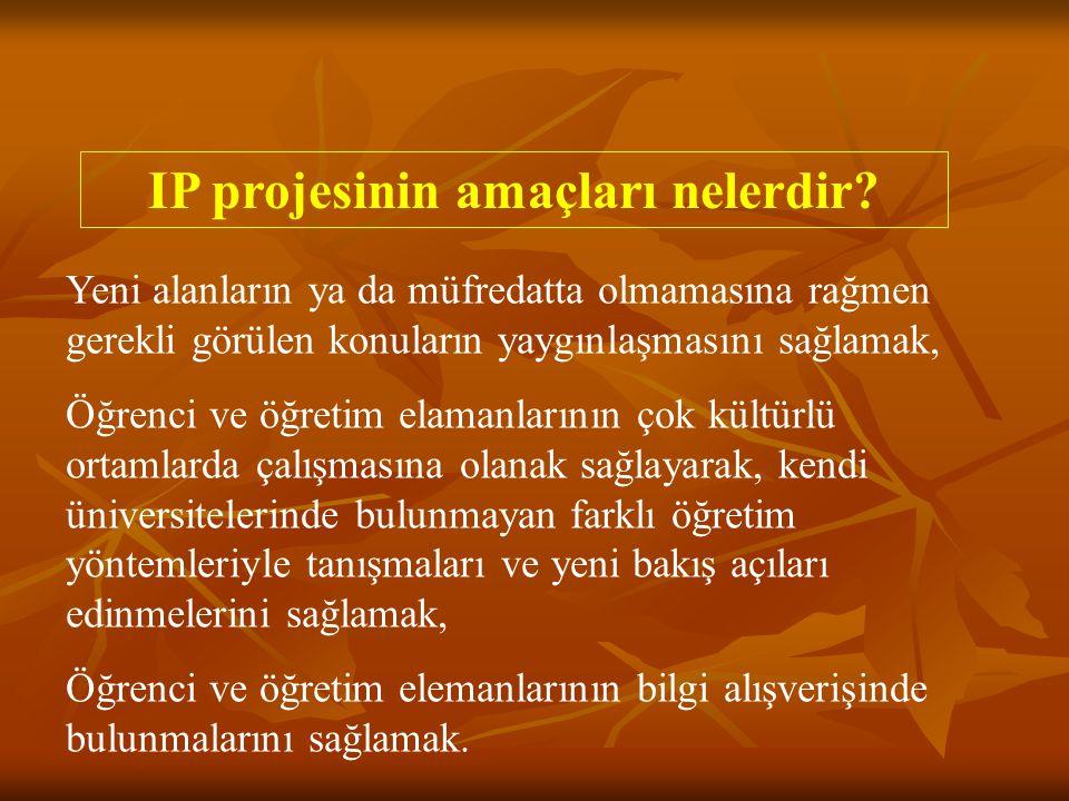 IP projesinin amaçları nelerdir