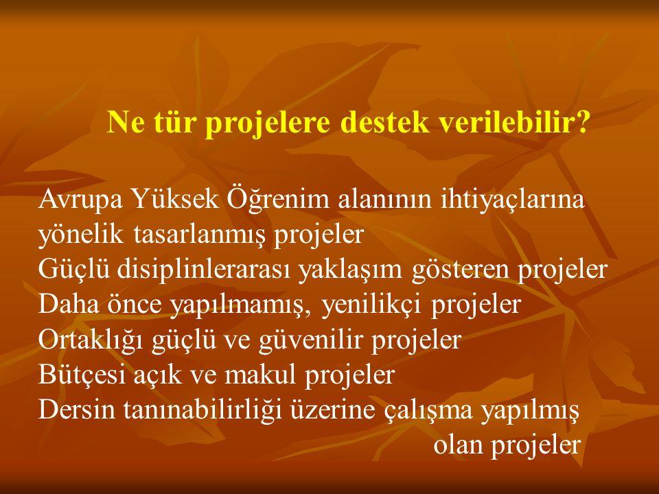 Ne tür projelere destek verilebilir