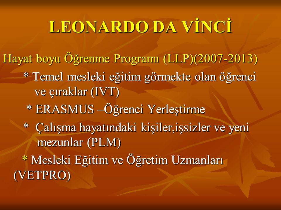 LEONARDO DA VİNCİ Hayat boyu Öğrenme Programı (LLP)(2007- 2013)