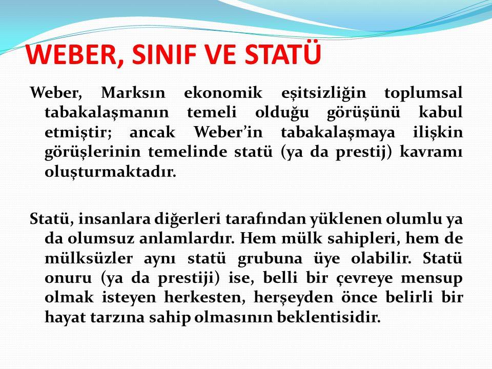 WEBER, SINIF VE STATÜ