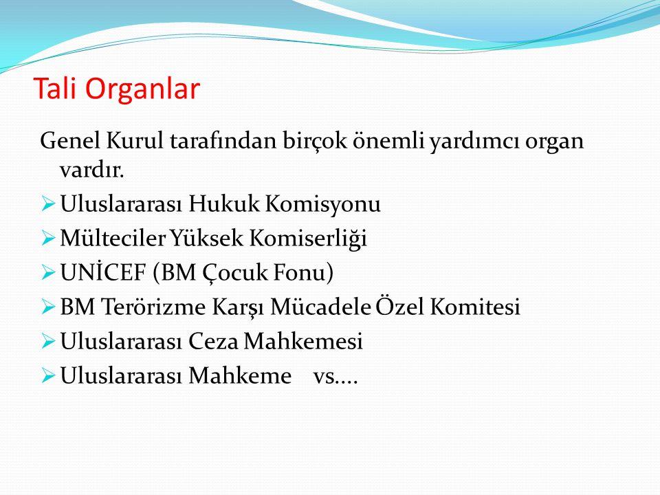 Tali Organlar Genel Kurul tarafından birçok önemli yardımcı organ vardır. Uluslararası Hukuk Komisyonu.