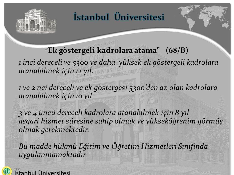 İstanbul Üniversitesi Ek göstergeli kadrolara atama (68/B)