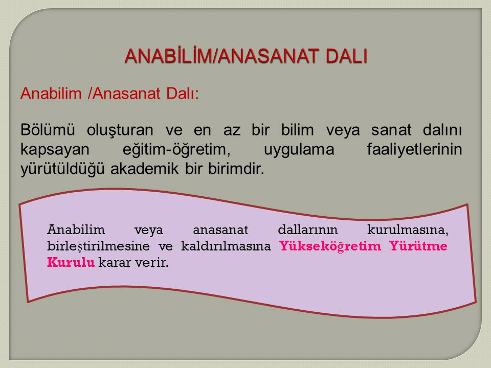 ANABİLİM/ANASANAT DALI