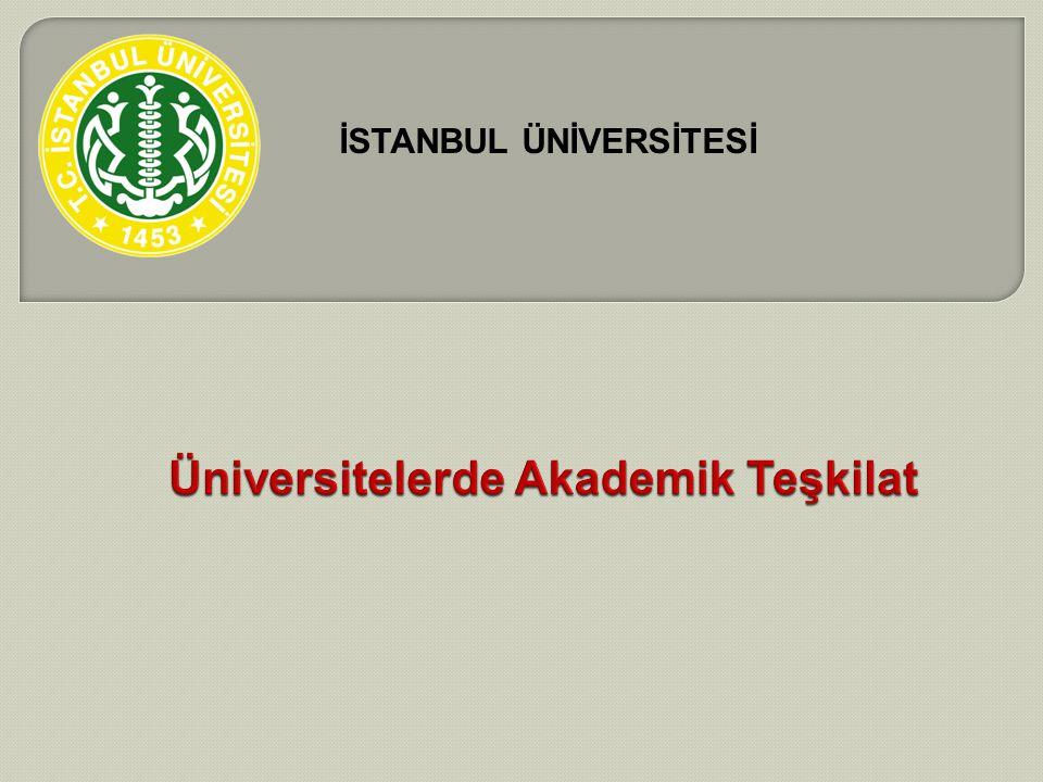 Üniversitelerde Akademik Teşkilat