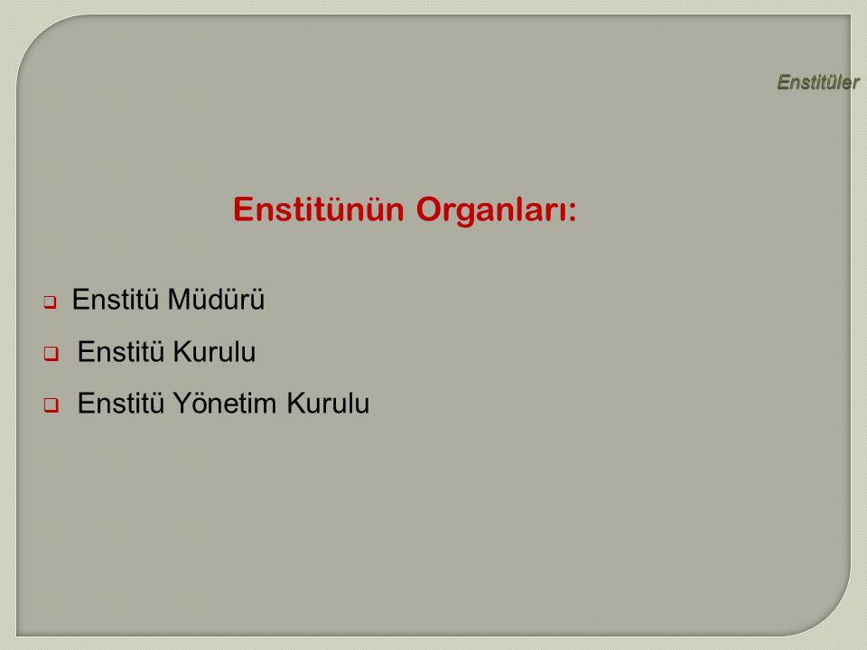 Enstitünün Organları:
