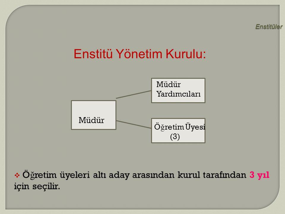 Enstitü Yönetim Kurulu: