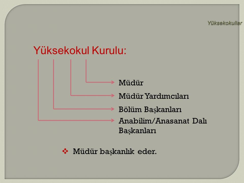 Anabilim/Anasanat Dalı Başkanları