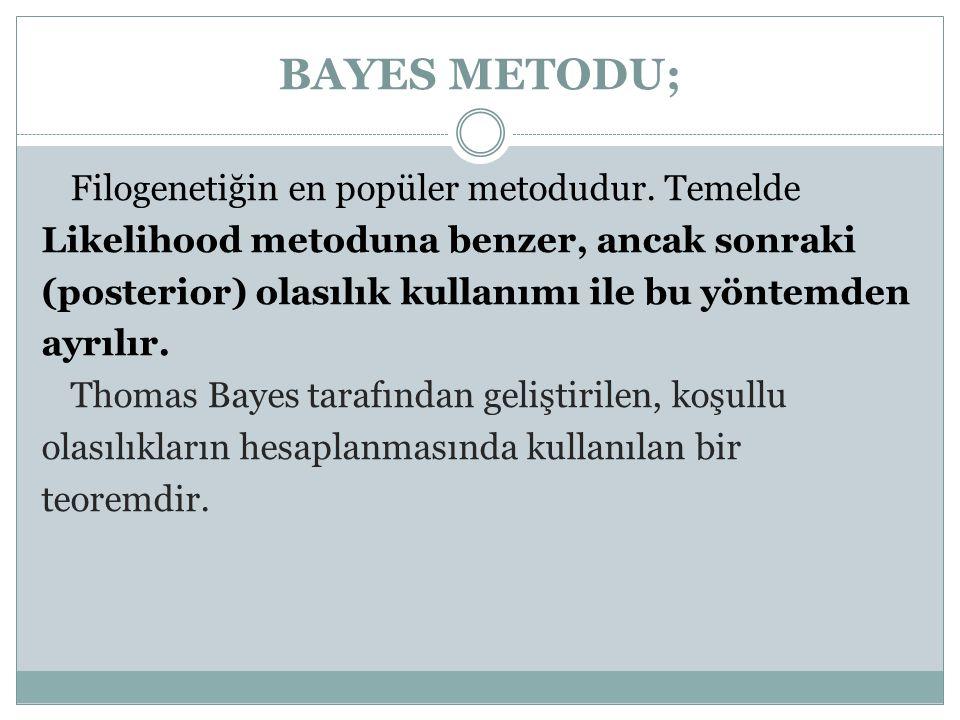 BAYES METODU;