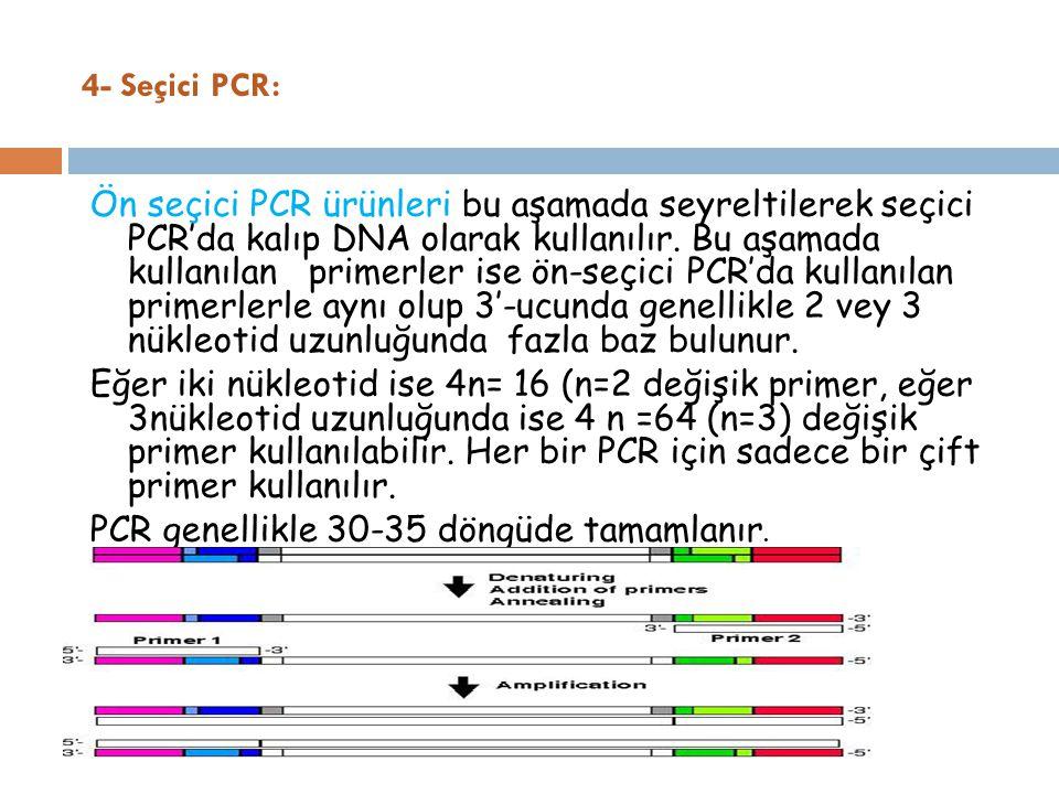 4- Seçici PCR: