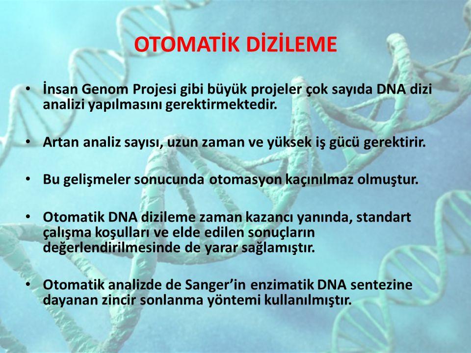 OTOMATİK DİZİLEME İnsan Genom Projesi gibi büyük projeler çok sayıda DNA dizi analizi yapılmasını gerektirmektedir.