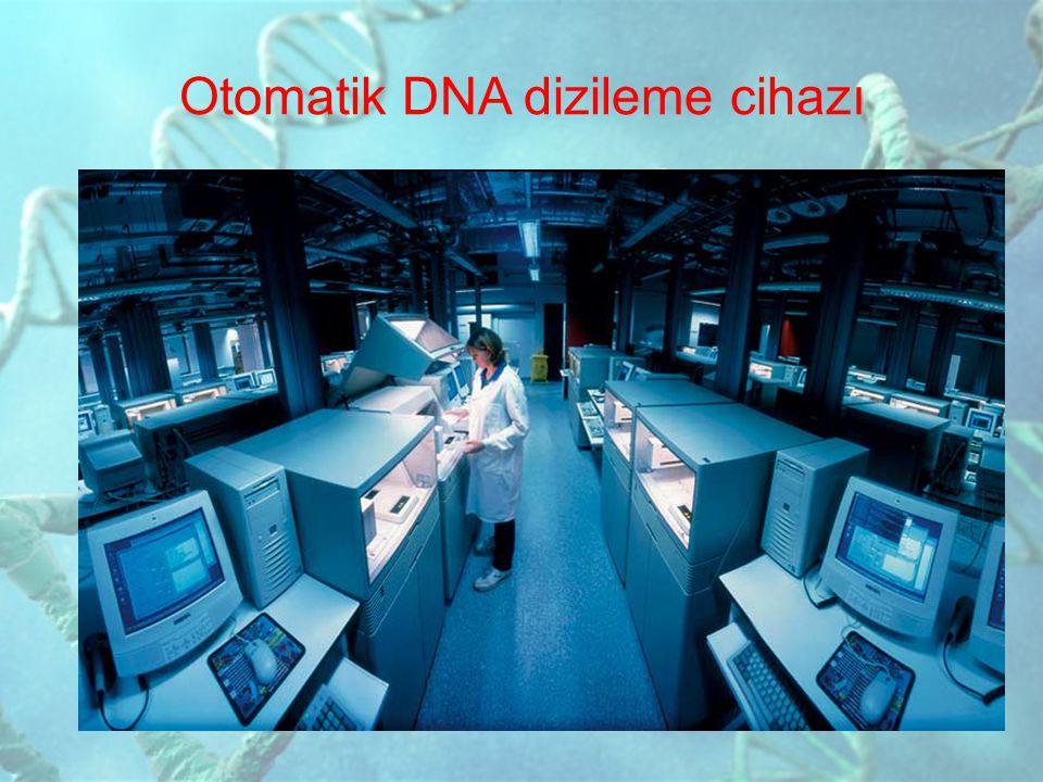 Otomatik DNA dizileme cihazı