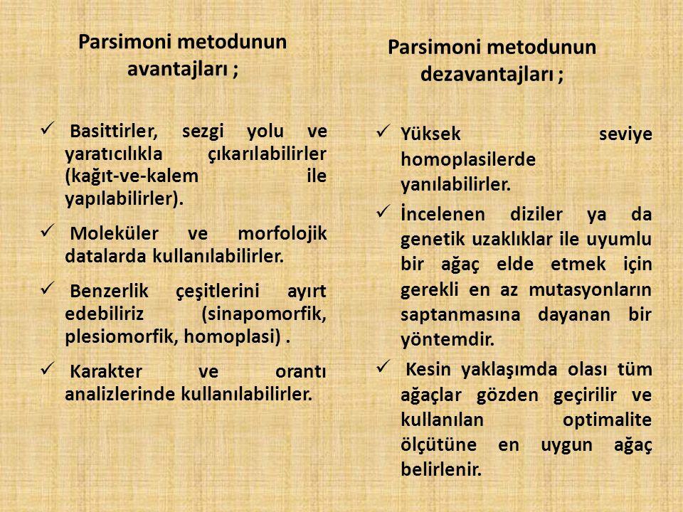 Parsimoni metodunun avantajları ; Parsimoni metodunun dezavantajları ;