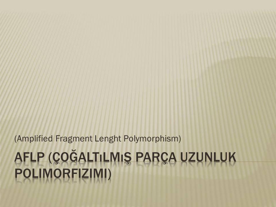 AFLP (Çoğaltılmış Parça Uzunluk Polimorfizimi)