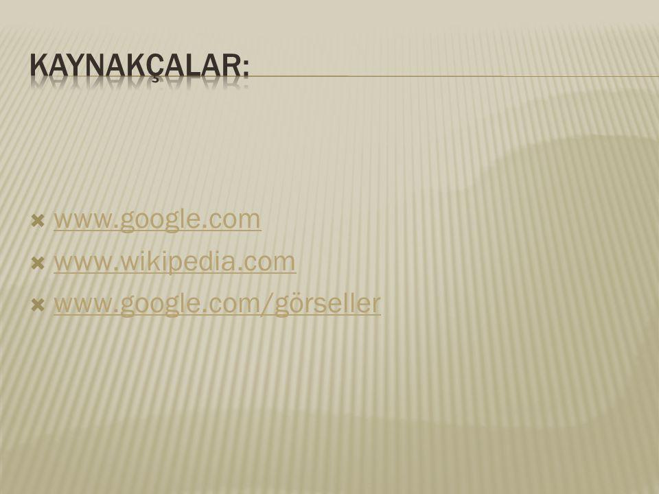 Kaynakçalar: www.google.com www.wikipedia.com www.google.com/görseller