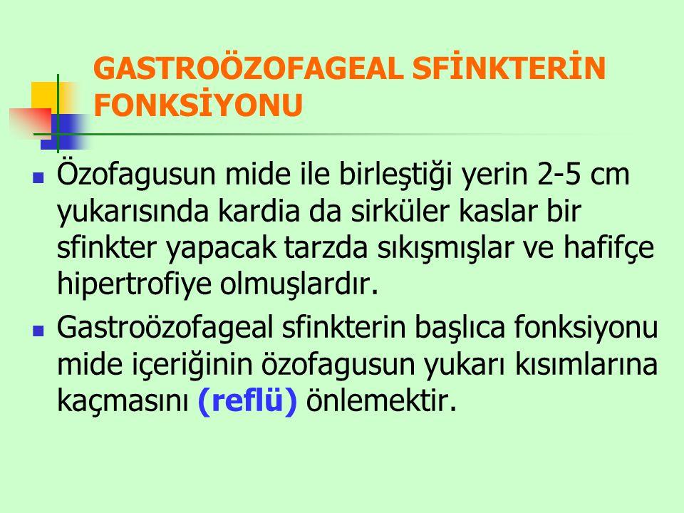GASTROÖZOFAGEAL SFİNKTERİN FONKSİYONU
