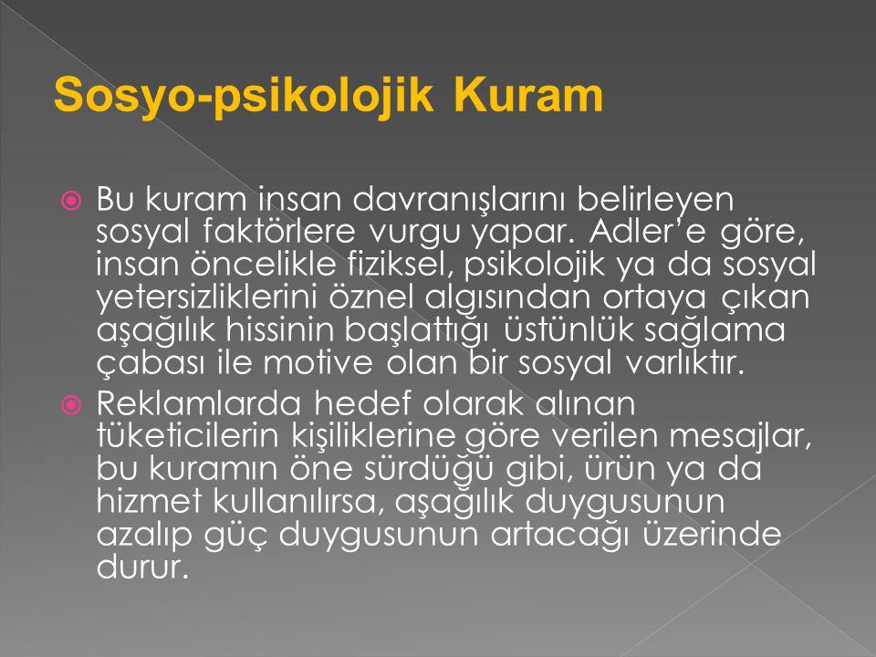 Sosyo-psikolojik Kuram