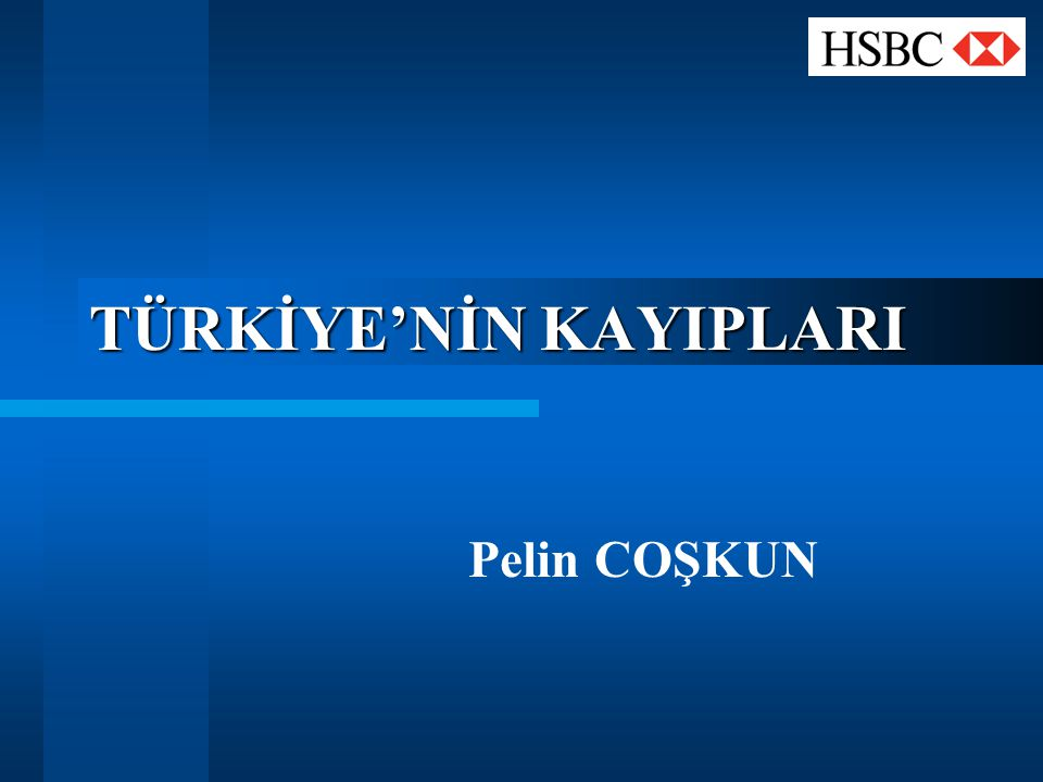 TÜRKİYE'NİN KAYIPLARI