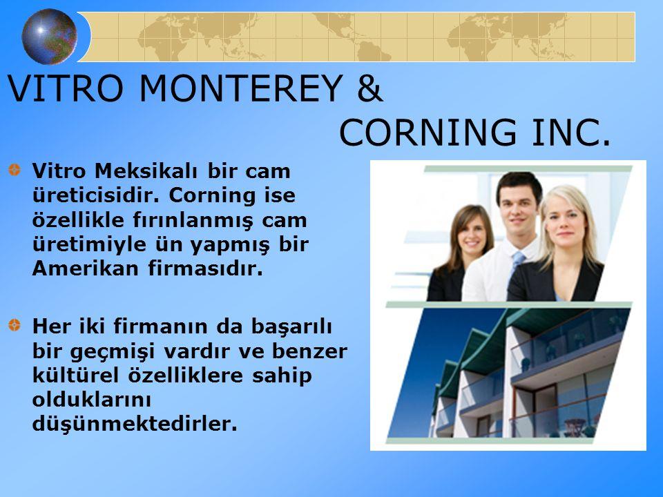 VITRO MONTEREY & CORNING INC.