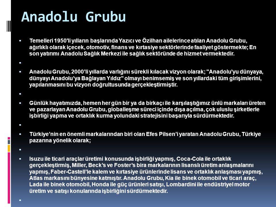 Anadolu Grubu