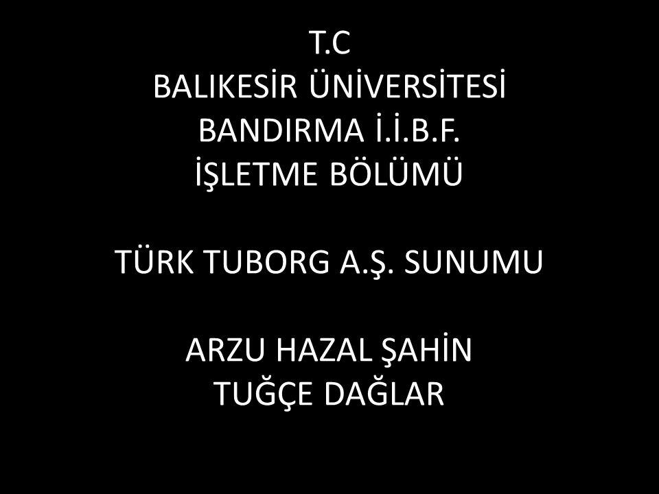 T. C BALIKESİR ÜNİVERSİTESİ BANDIRMA İ. İ. B. F