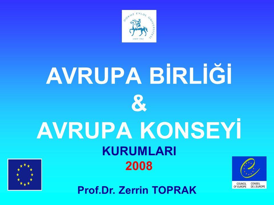 AVRUPA BİRLİĞİ & AVRUPA KONSEYİ KURUMLARI 2008