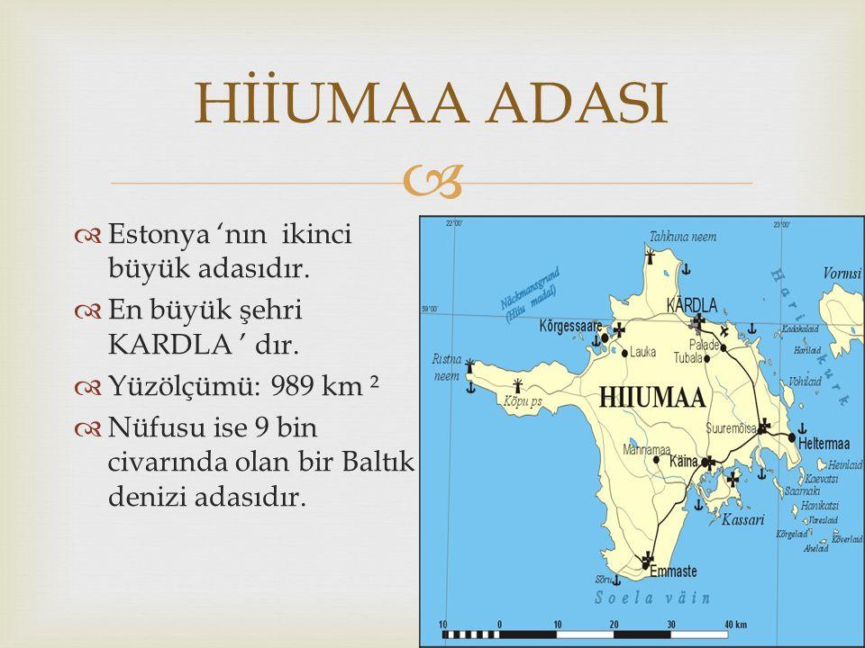 HİİUMAA ADASI Estonya 'nın ikinci büyük adasıdır.
