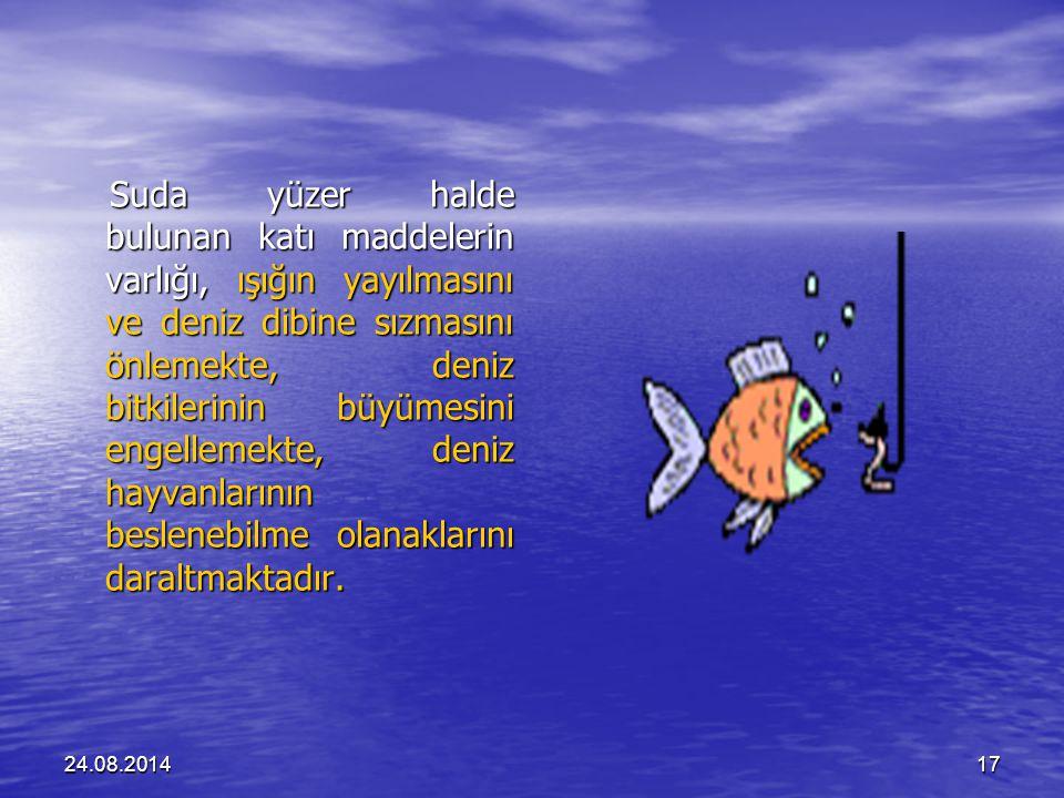 Suda yüzer halde bulunan katı maddelerin varlığı, ışığın yayılmasını ve deniz dibine sızmasını önlemekte, deniz bitkilerinin büyümesini engellemekte, deniz hayvanlarının beslenebilme olanaklarını daraltmaktadır.