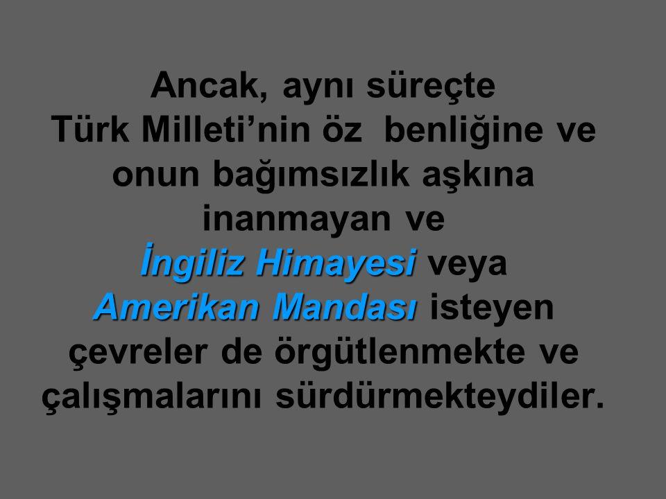 Ancak, aynı süreçte Türk Milleti'nin öz benliğine ve onun bağımsızlık aşkına inanmayan ve İngiliz Himayesi veya Amerikan Mandası isteyen çevreler de örgütlenmekte ve çalışmalarını sürdürmekteydiler.
