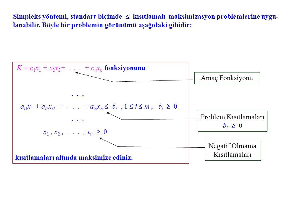 K = c1x1 + c2x2+ . . . + cnxn fonksiyonunu