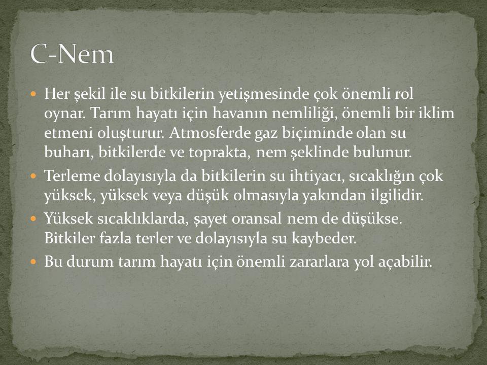 C-Nem