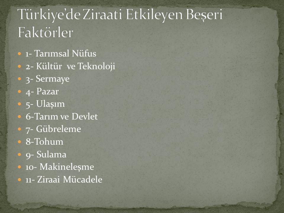Türkiye'de Ziraati Etkileyen Beşeri Faktörler