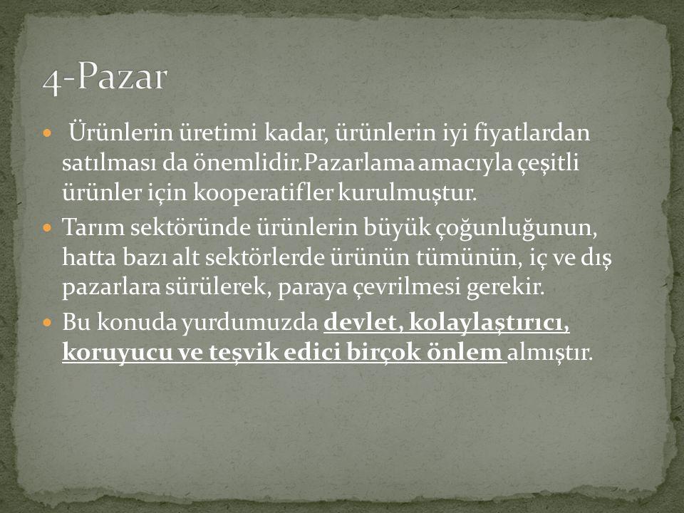 4-Pazar