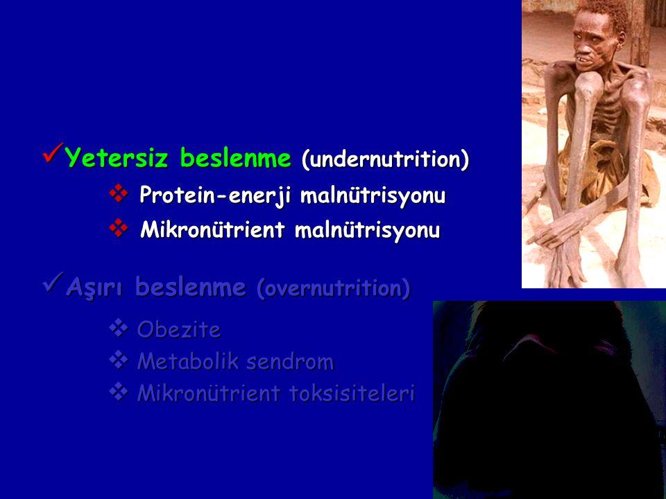 Yetersiz beslenme (undernutrition)